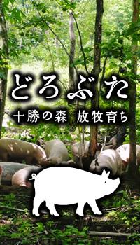レンジ帯広豚丼